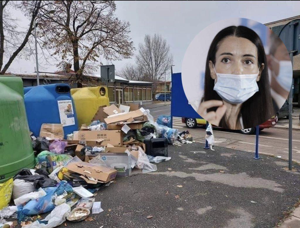 Sectorul 1 pe cale să devină un imens focar de infecție/Clotilde Armand pune ambitia persoanala inaintea interselor cetatenilor